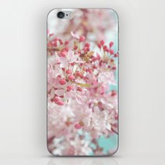 Pink Cherry Blossom iPhone & iPod Skin