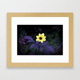 Happy Sunshine Framed Art Print