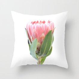 Sole Protea Throw Pillow
