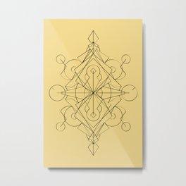 blpm163 Metal Print