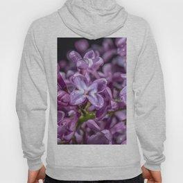 Purple Lilacs in the rain Hoody