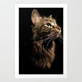 Cosmo In Profile Art Print