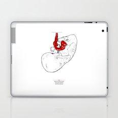 Socks Laptop & iPad Skin