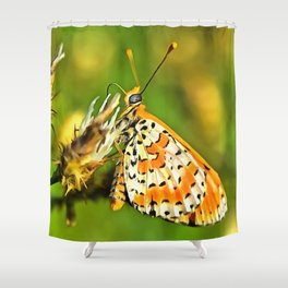 Spotted Fritillary Orange and White Butterfly Shower Curtain