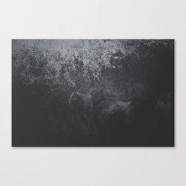 Field of Horses Canvas Print