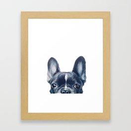 French Bull dog Dog illustration original painting print Framed Art Print