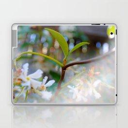 Star Jasmine Laptop & iPad Skin