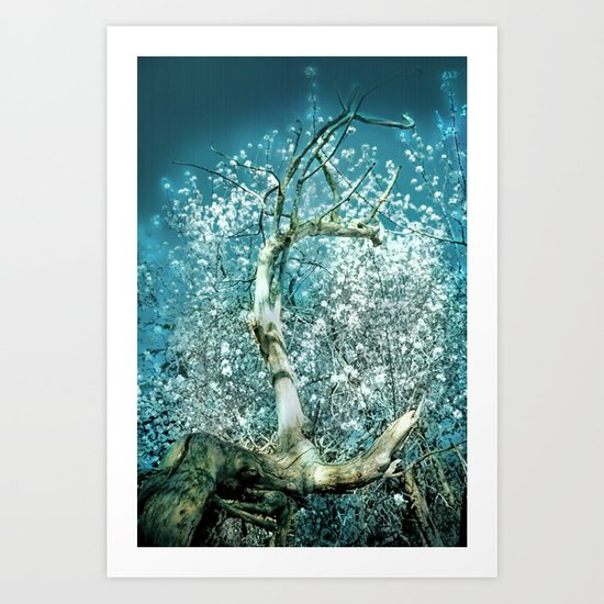 Branch and Blossom Art Print