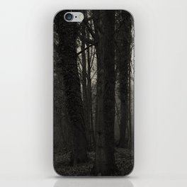 Winterscenery iPhone Skin