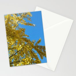 Hichu #1 Stationery Cards