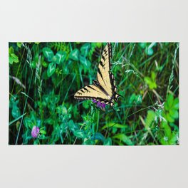 A Butterfly Using Its Wings Rug