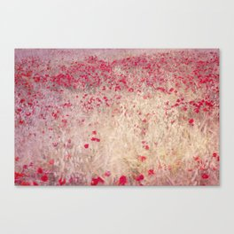 Fields of poppies Canvas Print