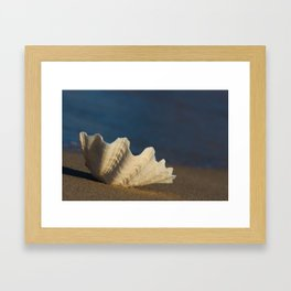 Big White Shell on the Sandy Beach Framed Art Print