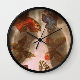Experiment 3: Mutation Wall Clock