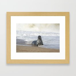 Come swim with me  Framed Art Print