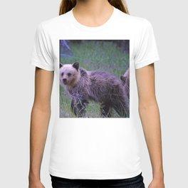 Grizzly bear cub in Jasper National Park   Alberta T-shirt