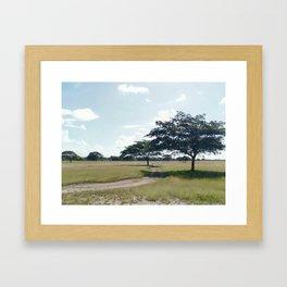 Camino a Casa Framed Art Print