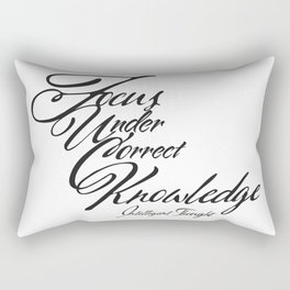 Focus Under Correct Knowledge  Rectangular Pillow