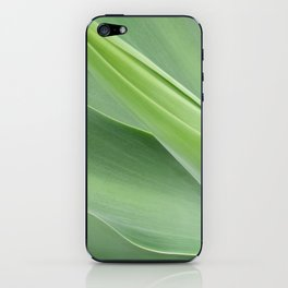 Green Agave Attenuata iPhone Skin