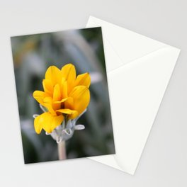 Yellow Flower Close-Up Photo Stationery Cards