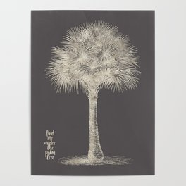 Palm tree - botanical silver illustration Poster
