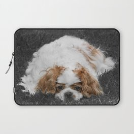 Cavalier King Charles Spaniel Dog Laptop Sleeve