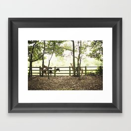 pony I Framed Art Print