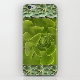 COLLAGE GRAY-GREEN  SUCCULENTS  MODERN DESIGN iPhone Skin