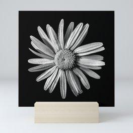 Dinged - BW Mini Art Print