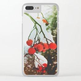 in winter Clear iPhone Case