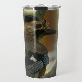 Eurasian Jay  Travel Mug