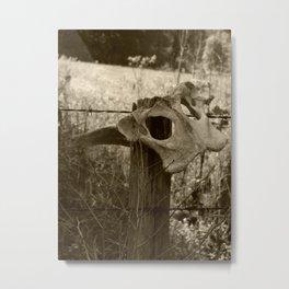 deer pelvis on fence Metal Print