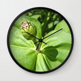 A Beautifull Bud Wall Clock