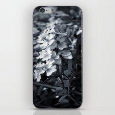 Florette iPhone & iPod Skin