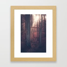 Autumn Moods Framed Art Print