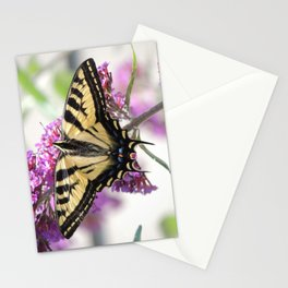Western Tiger Swallowtail on the Neighbor's Butterfly Bush Stationery Cards