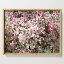 Light Pink Crab Apple Tree 2 Serving Tray
