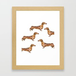 Dachshund Dog Watercolor Painting  Framed Art Print