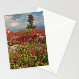 Dolly Sods Ruby Rockscape Stationery Cards
