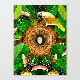 """""""Beauty Is Physics' Secret Weapon"""" by Rebecca Mock for Nautilus Canvas Print"""