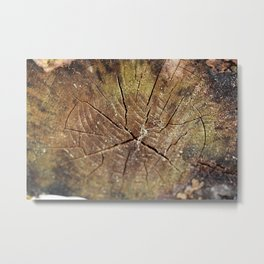 Wood Grain Metal Print