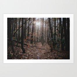 North Carolina Fall Art Print