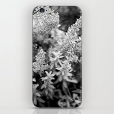 Leaves black n white iPhone & iPod Skin