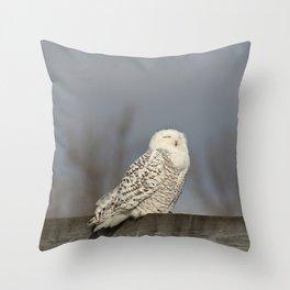 Snowy Owl Meditation Throw Pillow