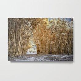 Bamboo Walkway Metal Print