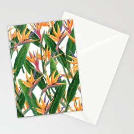 bird of paradise pattern Stationery Cards