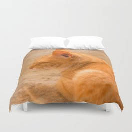 Orange Cat Is Resting On The Terrace  #decor #society6 #homedecor Duvet Cover