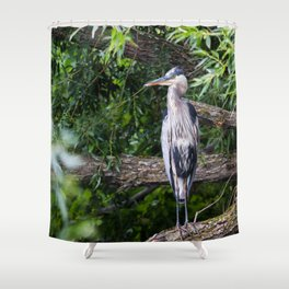 Heron waiting Shower Curtain