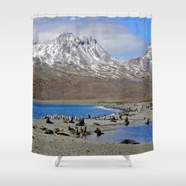 Fur Seals, King Penguins and Snowy Mountains Shower Curtain