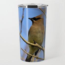 Cedar Waxwing Bird (2) by Reay of Light Travel Mug